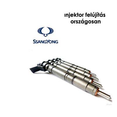 ssangyong injektor